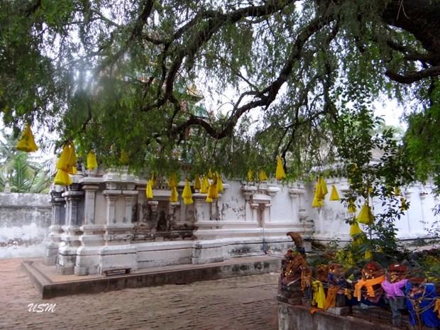 Image result for thirunageswaram temple snake
