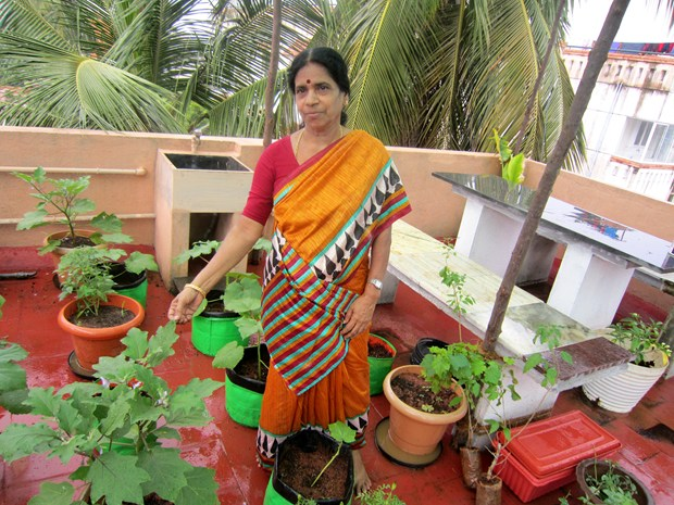 Devaki 39 S Tips For Setting Up A Terrace Garden Sulekha