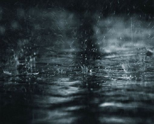 The essence of love ''Petrichor''