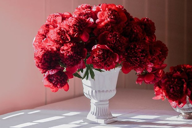 unique flowers for valentines day - flowers ideas, Ideas
