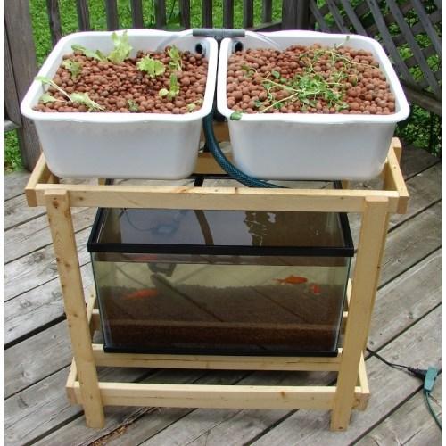 Do It Yourself Home Design: Aquaponics- An Innovative Gardening Technique