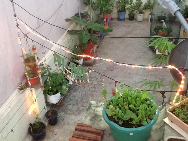 Gardening Ideas Gardening Tips Gardening Photos