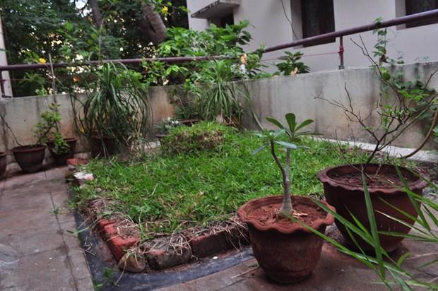 Our Tiny Garden Retreat