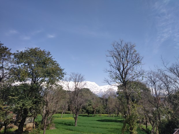 A precious moment with my mother Satya @ Ansoli (Feb. 27, 2019) The-snowy-hiamalayan-dhauladhar-range-view-from-ansoli-march-1-2019-1